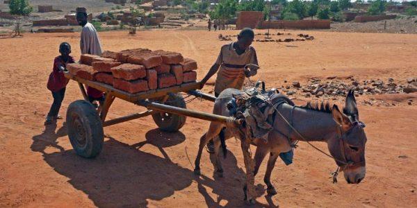 Lehmziegeltransport beim Bau des Schulcampus